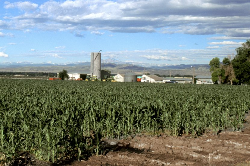 Colorado Department of Agriculture Builds A Digital Media Room